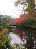 2012-11-24 東京自由行 Day3 -- 深大寺:06 深大寺.JPG