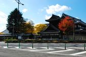 2013-11-29 關西賞楓  Day 4 西本願寺:04 西本願寺-01.JPG