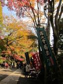 2012-11-24 東京自由行 Day3 -- 深大寺:17 深大寺.JPG