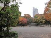 2012-11-26 東京自由行 Day5:02 新宿中央公園.JPG