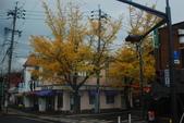 2014-10-21 東京 Day 4 輕井澤:07 往白絲瀑布-02.JPG