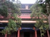 2010-10-17 濟南 曲阜一日遊:IMG_4932.JPG