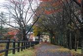 2014-10-21 東京 Day 4 輕井澤:06 輕井澤 矢崎公園-14.JPG