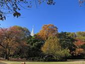 2012-11-25 東京自由行 Day4 -- 新宿御苑:06 新宿御苑.JPG
