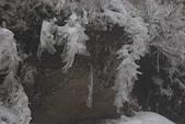 2014-02-15 武陵農場露營、合歡山賞雪:11 合歡山-25.JPG