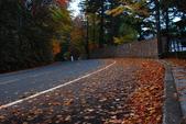 2014-10-24 東京 Day 7 中禪寺湖、華嚴瀑布、半月山、東京晴空塔:01 中襌寺湖-12.JPG