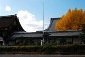2013-11-29 關西賞楓  Day 4 西本願寺:04 西本願寺-03.JPG