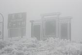 2014-02-15 武陵農場露營、合歡山賞雪:03 崑陽停車場-01.JPG