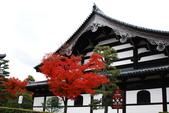 2013-11-28 關西賞楓 Day 3 東福寺:05 東福寺-08.JPG