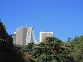 2012-11-25 東京自由行 Day4 -- 新宿御苑:07 新宿御苑.JPG