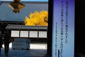 2013-11-29 關西賞楓  Day 4 西本願寺:04 西本願寺-04.JPG