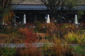 2014-10-21 東京 Day 4 輕井澤:06 輕井澤 矢崎公園-12.JPG