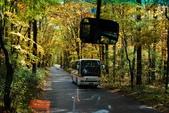 2014-10-21 東京 Day 4 輕井澤:08 白絲瀑布-22.JPG