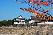 2013-11-30 關西賞楓 Day 5 大阪:04 大阪城公園-06.JPG