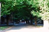 2014-10-25 東京 Day 8 東京大學、成田機場:02 東大-02.JPG