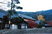2013-11-29 關西賞楓  Day 4 清水寺:01 清水寺-07.JPG