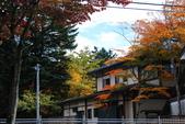 2014-10-21 東京 Day 4 輕井澤:10 往雲場池-02.JPG