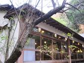 2012-11-24 東京自由行 Day3 -- 深大寺:02 深大寺.JPG