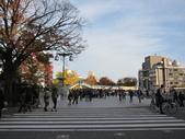 2012-11-25 東京自由行 Day 4 -- 銀杏並木、表參道、明治神宫:02 明治神宮.JPG