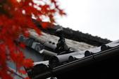 2013-11-28 關西賞楓 Day 3 東福寺:04 往東福寺路上-05.JPG