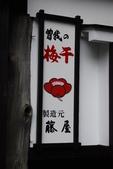 2014-10-20 東京 Day 3 箱根湯本、千葉港:01 箱根湯本-36.JPG