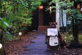2014-10-21 東京 Day 4 輕井澤:10 往雲場池-17.JPG