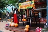 2014-10-21 東京 Day 4 輕井澤:09 舊輕井澤-06.JPG
