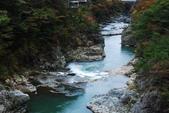 2014-10-23 東京 Day 6 鬼怒川溫泉:06 鬼怒川溫泉-13.JPG