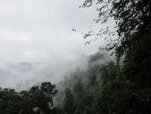 2013-09-01 宜蘭明池二日遊 Day 2:16 棲蘭神木園區02.JPG