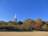 2012-11-25 東京自由行 Day4 -- 新宿御苑:10 新宿御苑.JPG