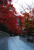 2013-11-29 關西賞楓  Day 4 清水寺:01 清水寺-10.JPG