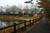 2014-10-21 東京 Day 4 輕井澤:06 輕井澤 矢崎公園-22.JPG