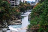 2014-10-23 東京 Day 6 鬼怒川溫泉:06 鬼怒川溫泉-11.JPG