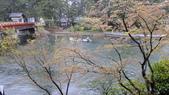 2015-04-14 京都八日遊 Day 4 天橋立、伊根:01 房間外的風景-01.JPG