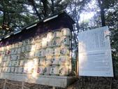 2012-11-25 東京自由行 Day 4 -- 銀杏並木、表參道、明治神宫:04 明治神宮.JPG