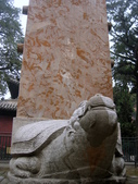 2010-10-17 濟南 曲阜一日遊:IMG_4928.JPG