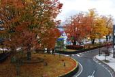 2014-10-21 東京 Day 4 輕井澤:04 輕井澤車站-13.JPG