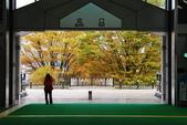 2014-10-21 東京 Day 4 輕井澤:04 輕井澤車站-05.JPG