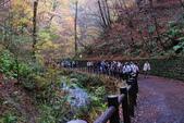 2014-10-21 東京 Day 4 輕井澤:08 白絲瀑布-03.JPG