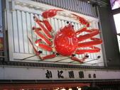 2013-11-29 關西賞楓 Day 4 大阪道頓堀:06 道頓堀-03.JPG