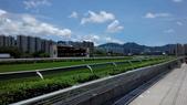 2014-05-25 香港三日遊  Day 1:03 沙田馬場-04.jpg