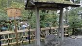 2015-04-13 京都八日遊 Day 3 六孫王神社、金閣寺、仁和寺、原谷苑:03 金閣寺-26.JPG