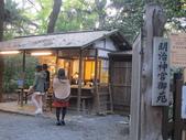 2012-11-25 東京自由行 Day 4 -- 銀杏並木、表參道、明治神宫:06 明治神宮.JPG