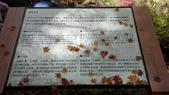 2014-10-21 東京 Day 4 輕井澤:11 雲場池-20.jpg