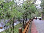 2013-09-01 宜蘭明池二日遊 Day 2:02 明池山莊木屋區.JPG