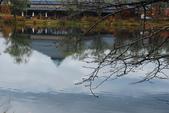 2014-10-21 東京 Day 4 輕井澤:06 輕井澤 矢崎公園-15.JPG