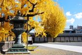 2013-11-29 關西賞楓  Day 4 西本願寺:04 西本願寺-10.JPG