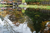 2014-10-21 東京 Day 4 輕井澤:11 雲場池-15.JPG