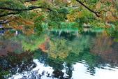 2014-10-21 東京 Day 4 輕井澤:11 雲場池-07.JPG