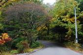 2014-10-21 東京 Day 4 輕井澤:16 星野渡假村-06.JPG